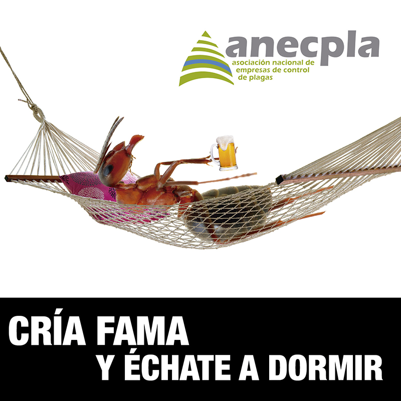 <p><strong>CR&Iacute;A FAMA... Y &Eacute;CHATE A DORMIR</strong></p>