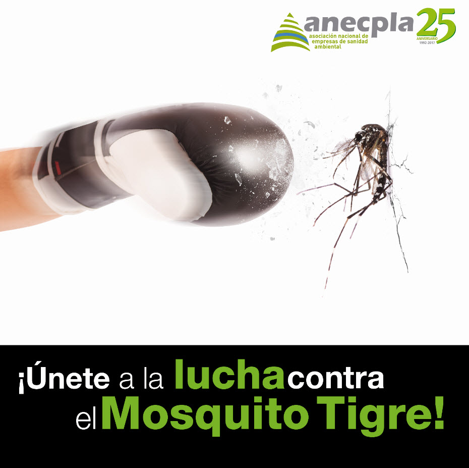 <p><strong>&iexcl;&iexcl;&Uacute;NETE A LA LUCHA CONTRA EL MOSQUITO TIGRE!!</strong></p>