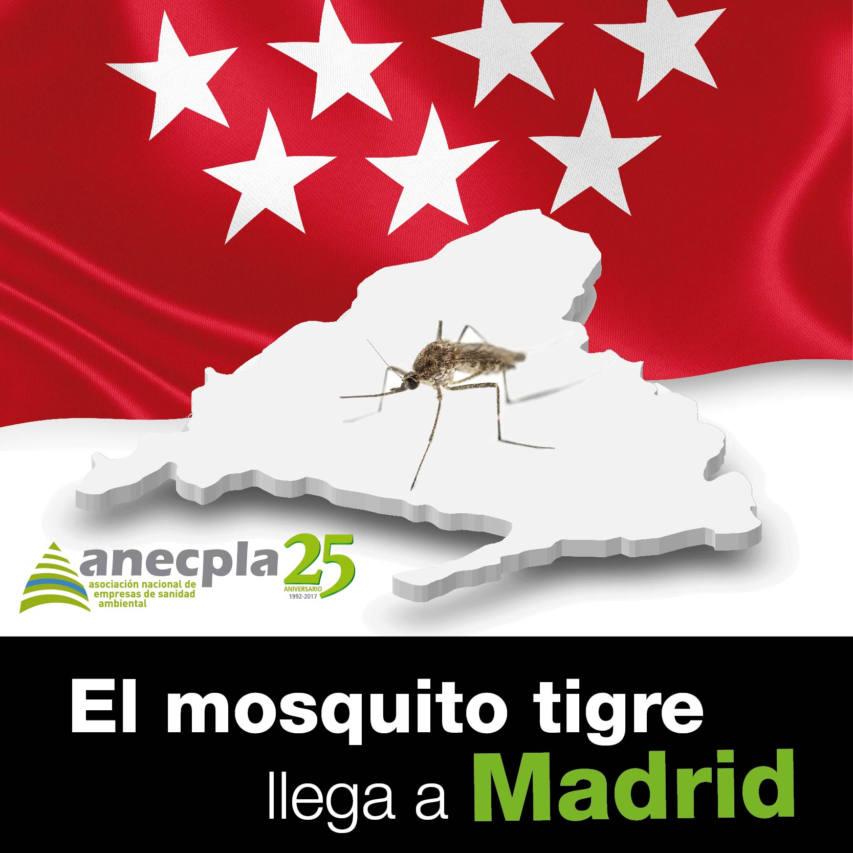 <p><strong>EL MOSQUITO TIGRE LLEGA A MADRID</strong></p>